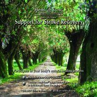 Support for Stroke Recovery 4 CD - zobrazit detail zboží